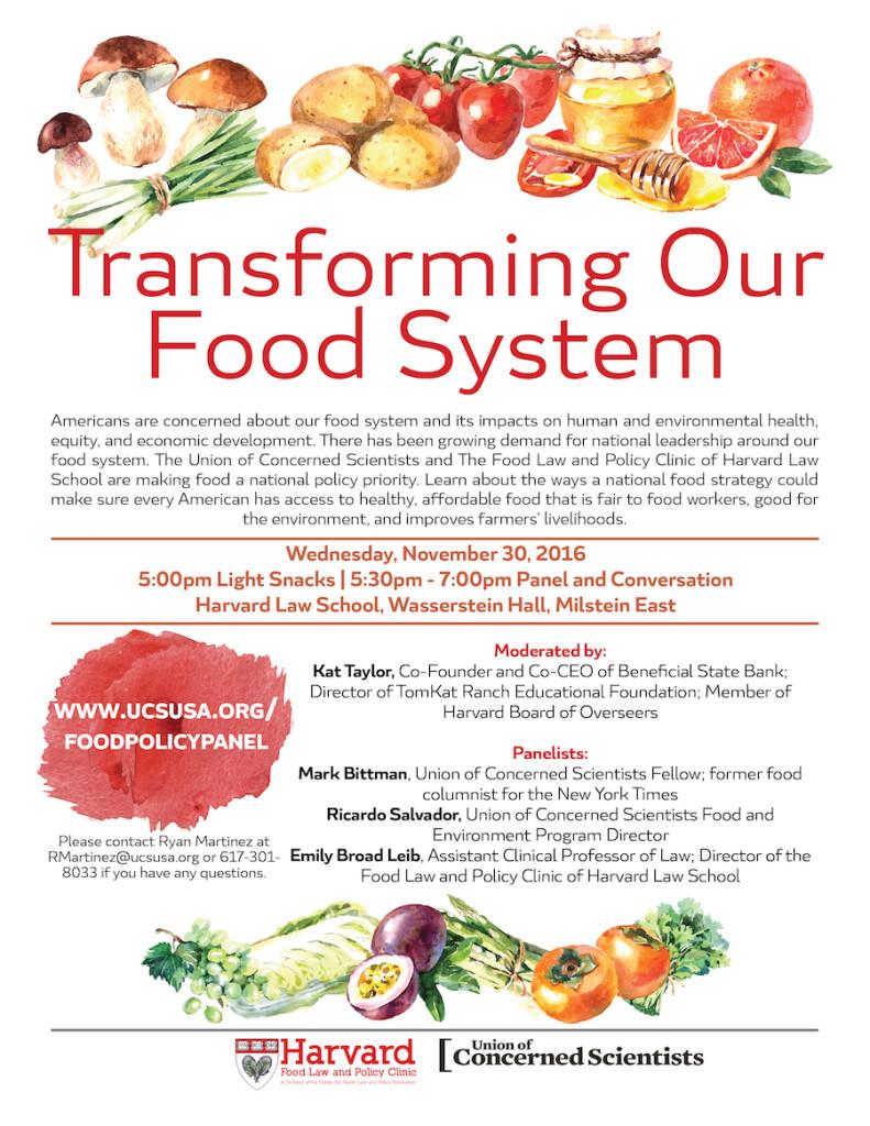 national-food-strategy-nov-2016-flyer